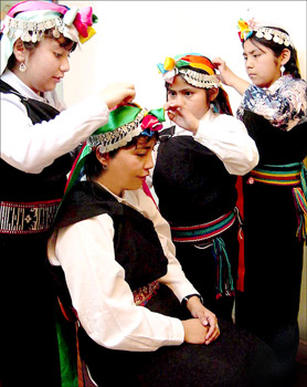 who are the mapuche people